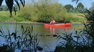 Kanutour Donau 05