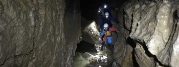 Header Falkensteiner Höhle